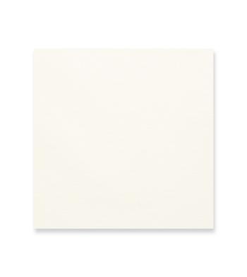 Ivory Snow Off White Solids by Hemrajani Product Image