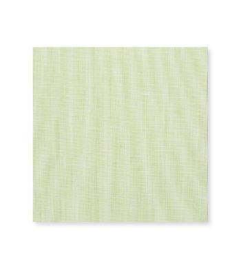 Lime Sorbet Light Green Solids by Hemrajani Product Image