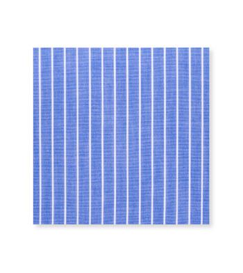 Gregarious Tropical Splash Blue Striped by Hemrajani Product Image