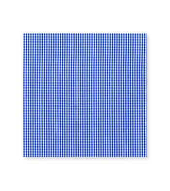 Impressive Melodrama Dutch Blue Check by Hemrajani Product Image