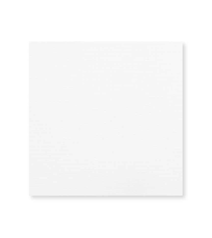 Crisp Linen White Solids by Hemrajani Product Image