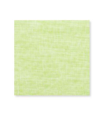 Soft Green Linen Light Green Semi Solids by Hemrajani Product Image