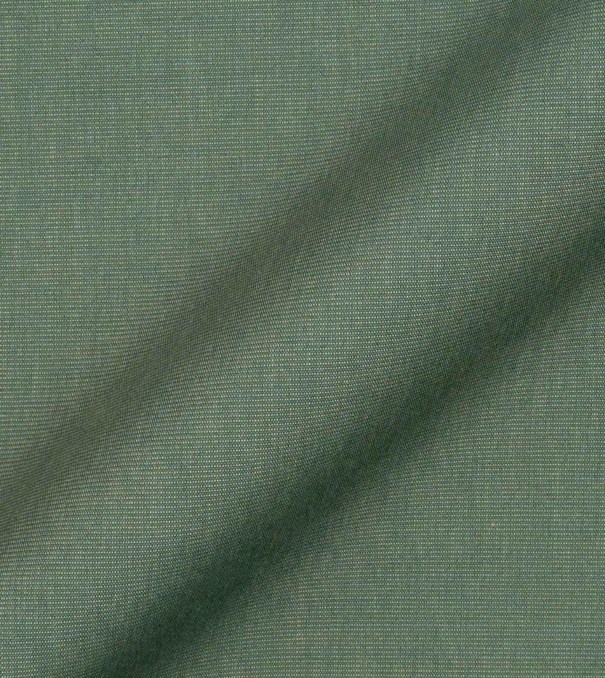 Olive Branch by Hemrajani Product Image