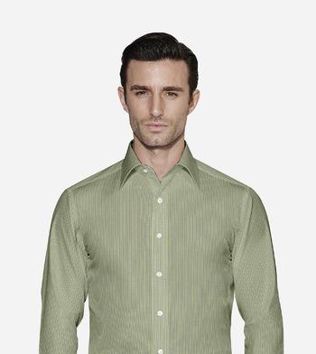 shirts cottons blue stripes on green poplin